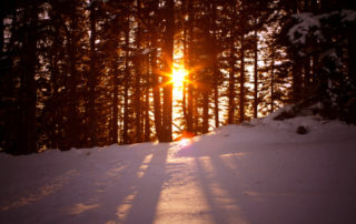 TIPS for STAYING HEALTHY THIS WINTER 1